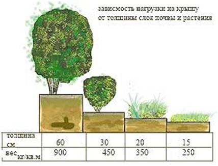 Определение величины нагрузки в зависимости от толщины слоя почвы и разновидности растений