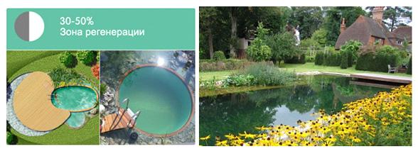 Бассейн со средним размером биоплата (30-50%)