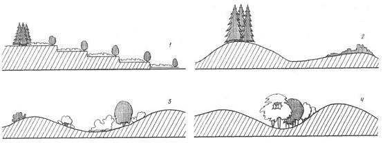Примеры использования растительности в зависимости от вида рельефа