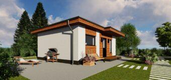 Жилой одноэтажный дом «Гостевой»